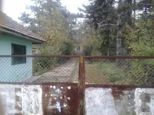 La poartă la spitalul din Coțofanca. Clădirea principală este puțin vizibilă din cauza crengilor copacilor care au crescut